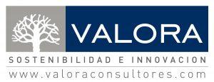 logo VALORA