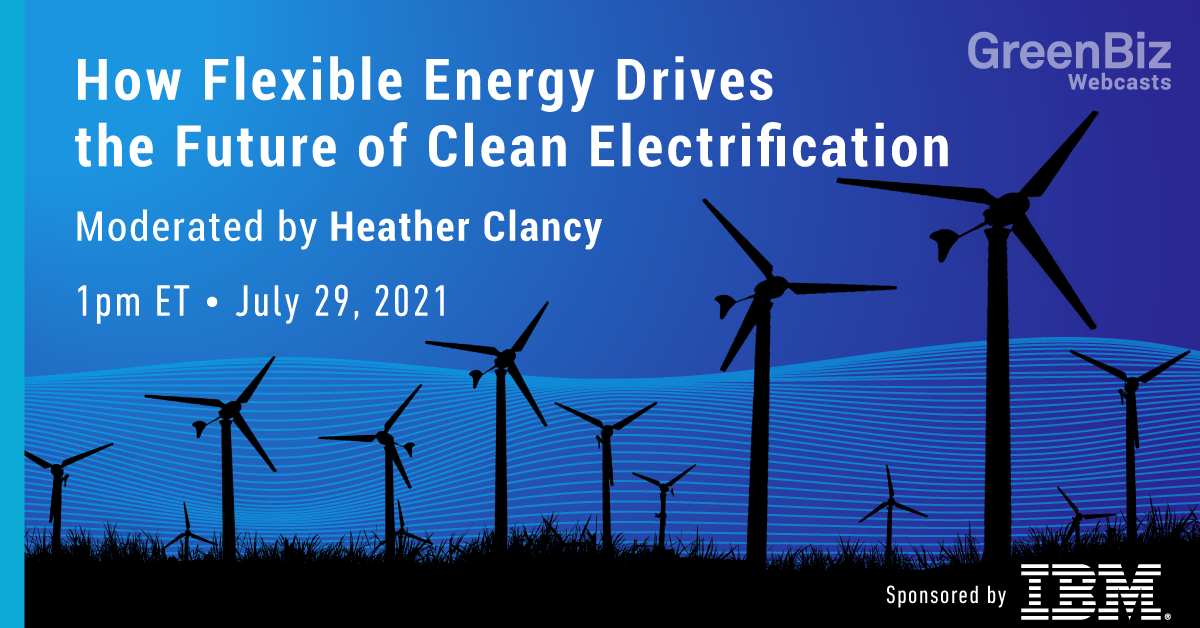 How Flexible Energy Drives the Future of Clean Electrification