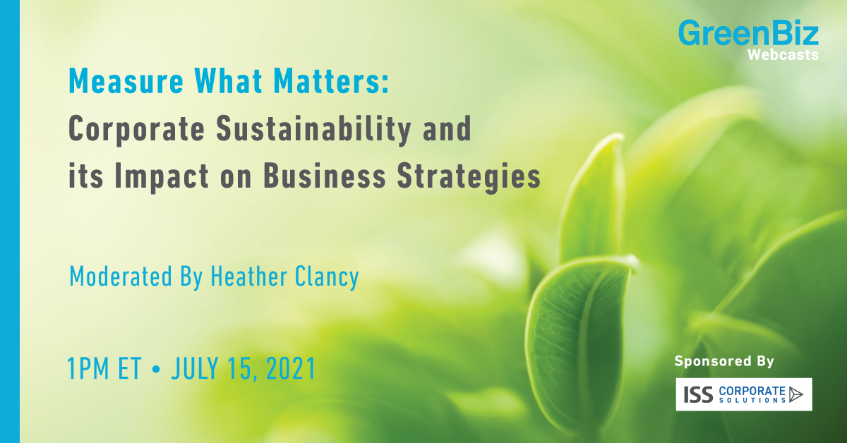 Measure What Matters: Corporate Sustainability and its Impact on Business Strategies