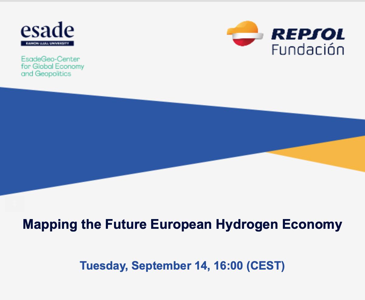 Mapping the Future European Hydrogen Economy