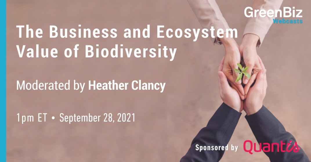 The Business and Ecosystem Value of Biodiversity